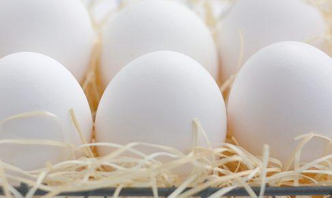 栄養たっぷり!一日一個を目安に食べたい卵のレシピ
